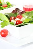 Garden salad Royalty Free Stock Image