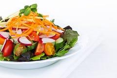 Garden salad Royalty Free Stock Photo