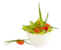 Garden salad Royalty Free Stock Photography