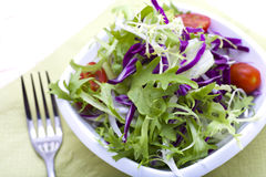 Garden salad. With fresh lettuce leaves, tomato Royalty Free Stock Photos