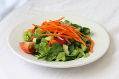 Garden Salad. A Healthy Garden Salad royalty free stock photo