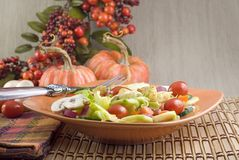 Garden Salad Autumn Setting Stock Image