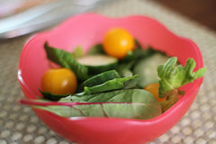 Garden salad. In a bowl Stock Image