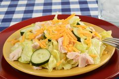 Garden salad with chicken Stock Images
