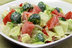 Garden Salad with Dressing. Raw Garden Salad of broccoli, tomato, cucumber, lettuce with Dressing of homemade vegan mayonnaise royalty free stock images