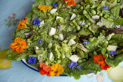 Garden salad with eatable flowers Stock Photo
