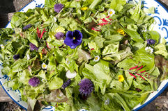 Garden salad with eatable flowers Stock Photos