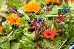 Garden salad with eatable flowers Royalty Free Stock Images