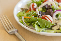 Garden Salad Ranch. Fresh organic garden salad with creamy ranch dressing royalty free stock photography