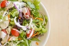 Garden Salad Ranch royalty free stock photos