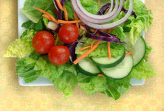 Garden Salad on Square Plate Royalty Free Stock Image