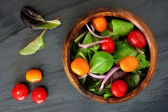 Garden salad with tomatoes and onions on slate background Stock Image
