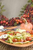 Garden Salad With Autumn Setting Royalty Free Stock Image