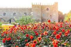 The Garden of Santa Barbara alongside the eastern wing of the historical Archbishop`s Palace. Colorful flowers under the bright su. Portuguese attractions. View royalty free stock images