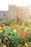 The Garden of Santa Barbara alongside the eastern wing of the historical Archbishop`s Palace. Colorful flowers under the bright su. Portuguese attractions. View stock photo