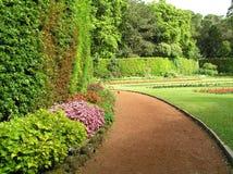 Garden in Sao Miguel