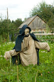 Garden scarecrow Stock Photo