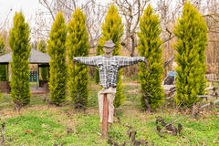 Garden scarecrow made to guard the field. Royalty Free Stock Photo