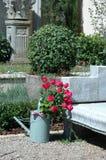 Garden Scene. Stock Images