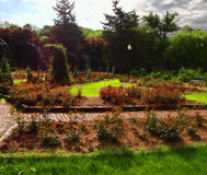 Garden scene Royalty Free Stock Photo