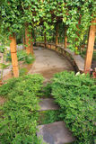 Garden. The scenery of green garden Royalty Free Stock Photography