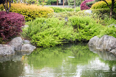 Garden scenery Royalty Free Stock Image