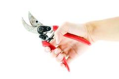 Garden scissors Stock Photography