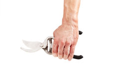 Garden scissors in hand Royalty Free Stock Photography