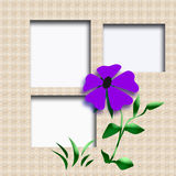 Garden scrapbook frame Royalty Free Stock Image