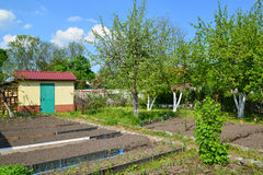 Garden section in the spring. Russia Stock Image