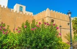 The garden in Sfax Stock Photos