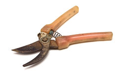 Garden Shears Royalty Free Stock Photo