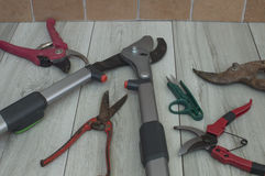 Scissors for pruning. Different sizes and models Stock Image