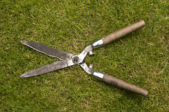 Garden shears Royalty Free Stock Image