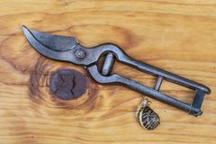 Garden shears, rusty, old and vintage with snail on the wood. Snail takes a look at garden shears on the wood.Shears are useful for gardening, pruning, hobby Stock Images