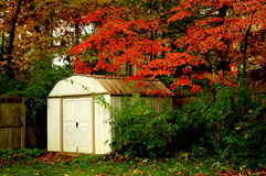 Garden Shed Afternoon Sun In Autumn Stock Photography