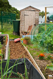 Garden shed on allotment Stock Images