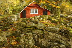 Garden shed in autumn stock photos