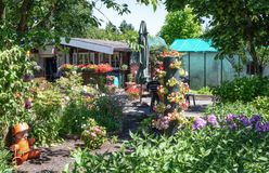 Garden shed and green house surrounded by a beautiful decorative stock image