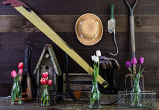 Garden shed interior with tools and flowers Royalty Free Stock Images