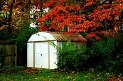 Garden shed midday in autumn Stock Images