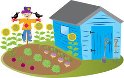 Garden shed with scarecrow. A cartoon garden shed with a vegetable garden and a scarecrow with crows, and some tall sunflowers stock illustration