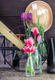 Garden shed with tools and flowers Royalty Free Stock Image