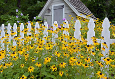 Garden Shed. A garden shed with white picket fence and flowers blooming Royalty Free Stock Photos
