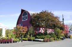 Garden shop center Royalty Free Stock Photo