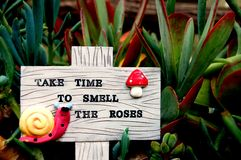 Garden sign. This is my garden sign reminding me to 'Take time to smell the roses'. It is in a planter with my succulents royalty free stock photos