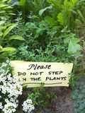 Garden Sign. A sign in the garden reads please dont step on the plants Stock Images