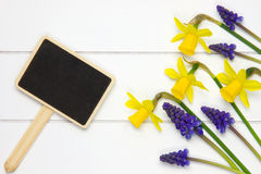 Garden sign on wooden surface and spring flowers. Garden sign on white wooden surface with blue grape hyacinths and daffodils Royalty Free Stock Photo
