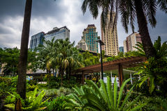 Garden and skyscrapers at Greenbelt Park, in Ayala, Makati, Metr Royalty Free Stock Photography