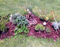 Garden. Small garden seen as art Stock Images